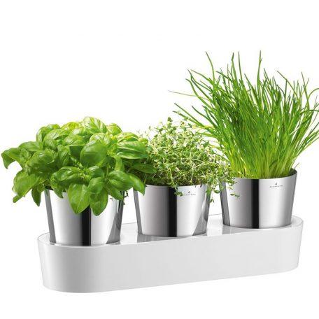 Herbs@Home